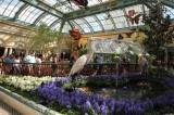 Bellagio Hotel Botanic Garden Las Vegas